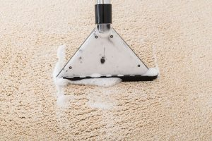 Shampooing Your Carpet